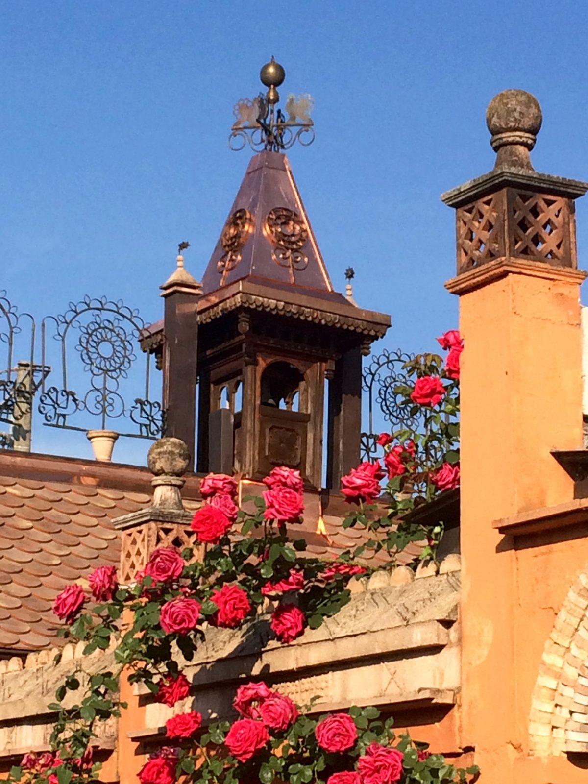 roses à l'assaut des clochetons