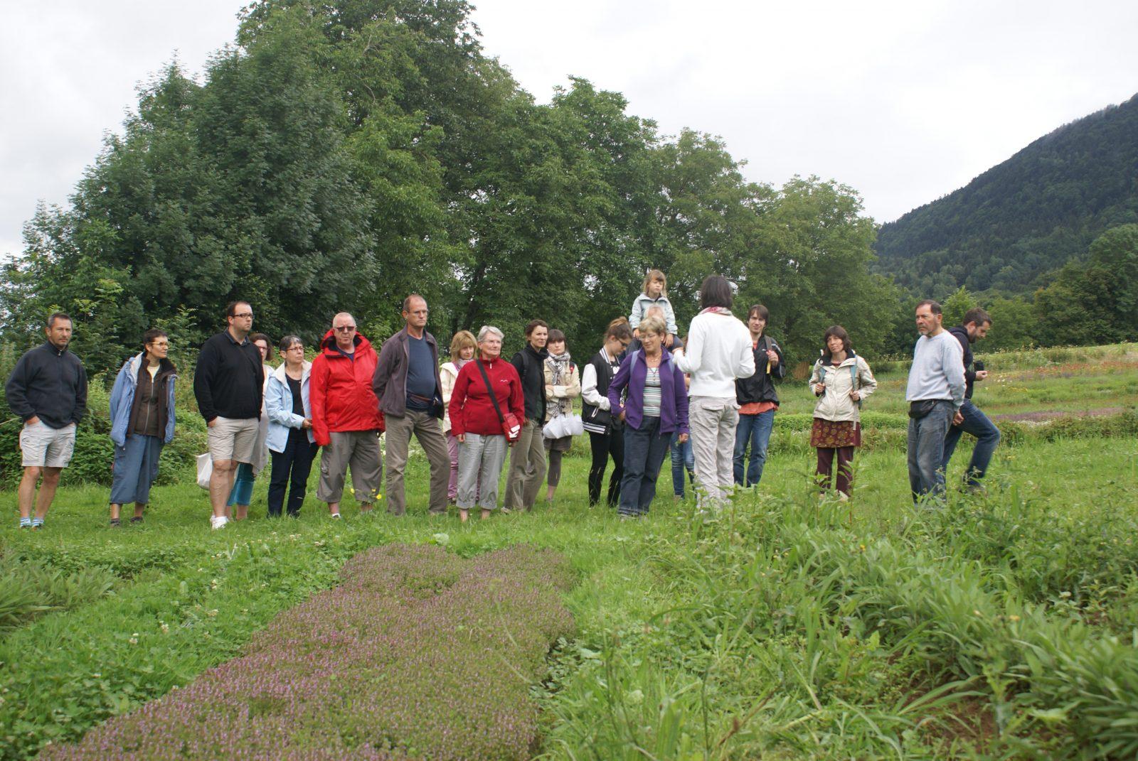 Visite du jardin de l'Herbier de la Clappe