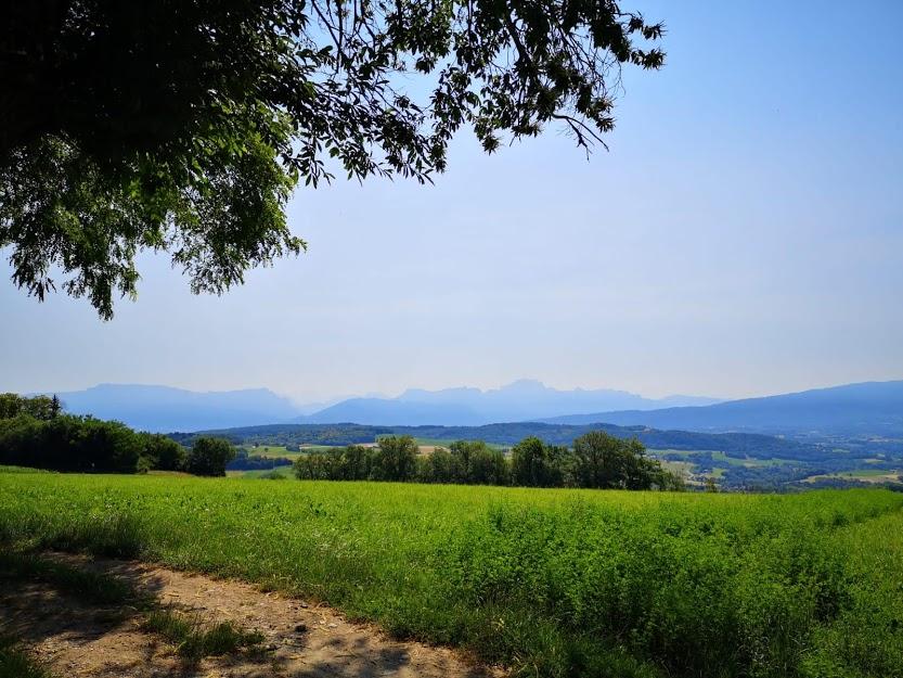 Trail Panoramic Saint-Eusèbe